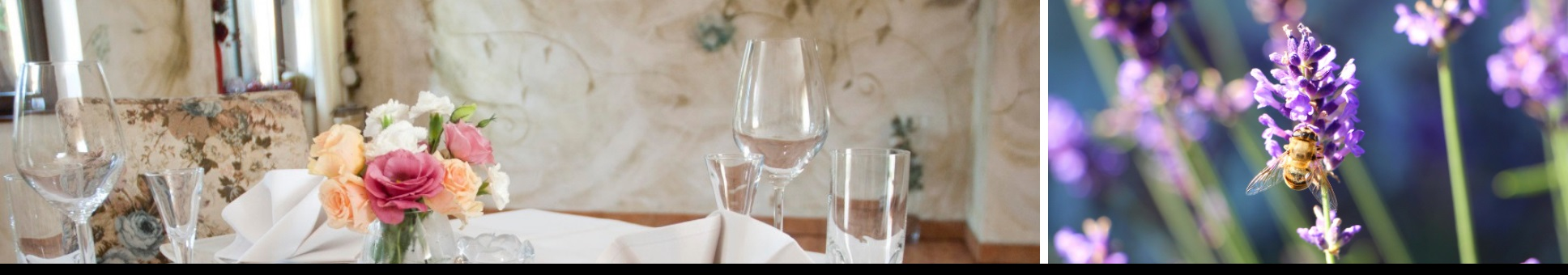 Restauracja Lawendowy Ogród - Świerklaniec - Wesela-Catering-Imprezy rodzinne